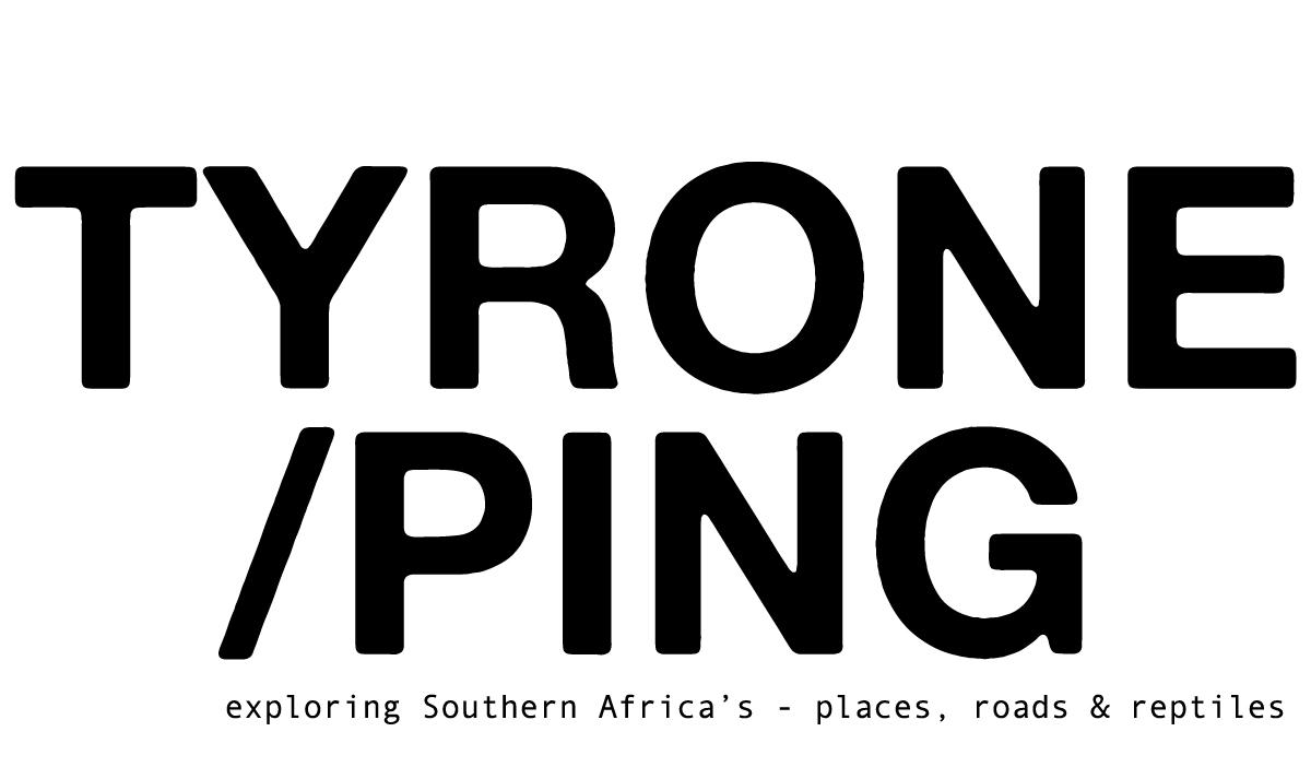 Tyrone Ping